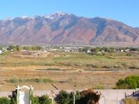 fall-2009